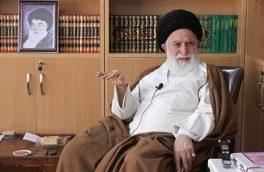 حجه الاسلام زائری: مرجع آینده ما حضرت آیت الله علوی بروجردی هستند