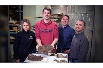 کشف فسیل ۱۱ میلیون ساله «فرشته مرگ» در کانادا