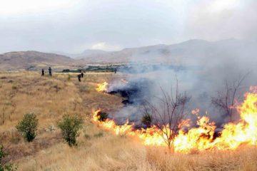 حبس ۱۰ ساله برای آتش زنندگان مراتع/ بارندگیهای خوب علتی برای افزایش حریق!